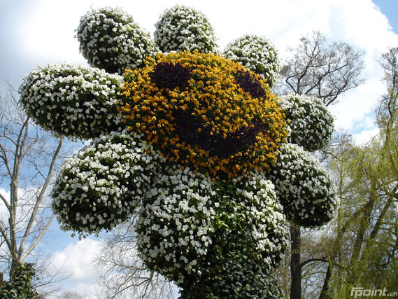 Zum Beitrag Blumeninsel Mainau